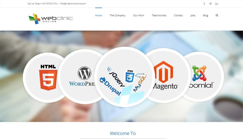 Webclinic online- WordPress Avada Theme
